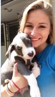 Boston Dog Trainer, Kim Lancaster