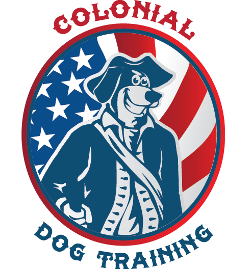 Colonial Dog Training