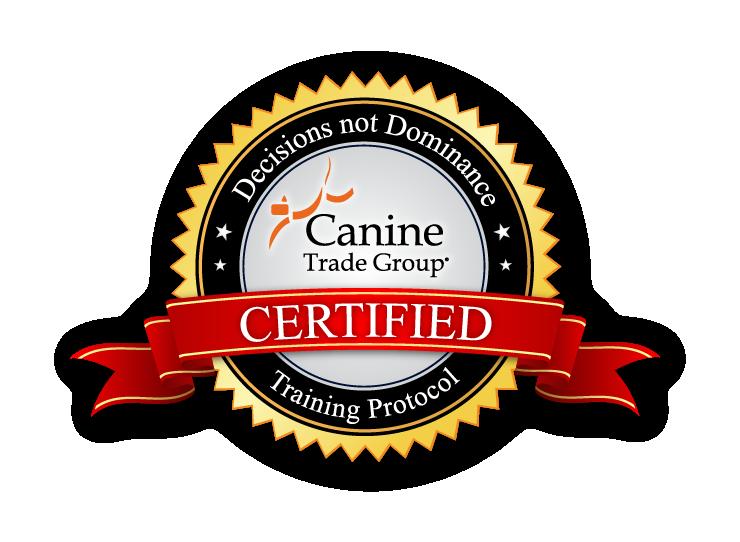 Boston dog training
